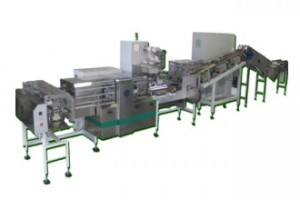 Rice Cake Machine Rice Cake And Corn Cake Feeding System Double Line 40.000 Cakes/Hour